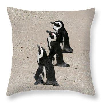 Three African Penguins Throw Pillow