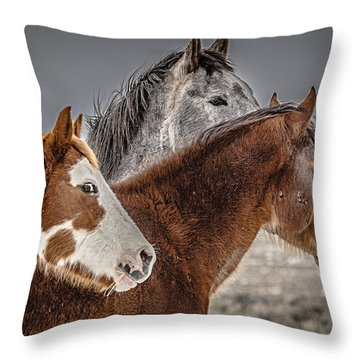 Throw Pillow featuring the photograph Three Amigo Mustangs by Yeates Photography