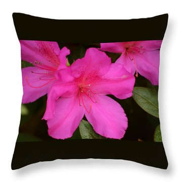 Three Azaleas Throw Pillow by Warren Thompson