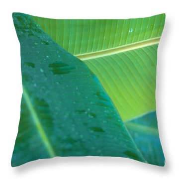 Three Banana Leaves Throw Pillow by Dana Edmunds - Printscapes