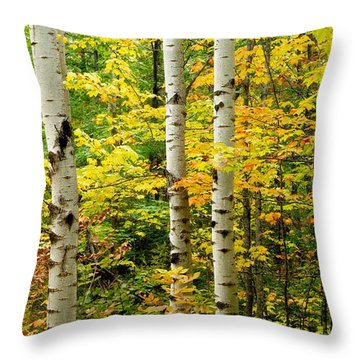 Three Birch Throw Pillow by Michael Peychich