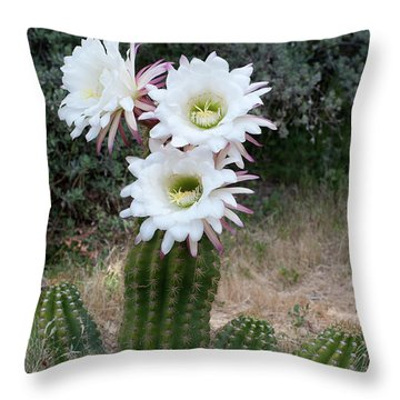 Three Blossoms Throw Pillow