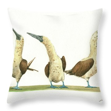 Three Blue Footed Boobies Throw Pillow by Juan Bosco