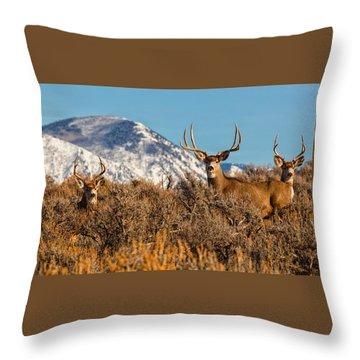 Three Bucks Crown  Throw Pillow