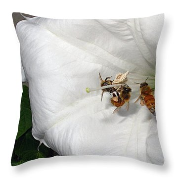 Throw Pillow featuring the photograph Three Busy Bees by Joyce Dickens