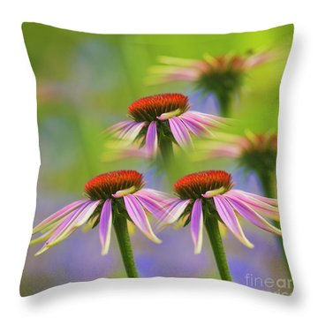 Coneflowers Throw Pillows