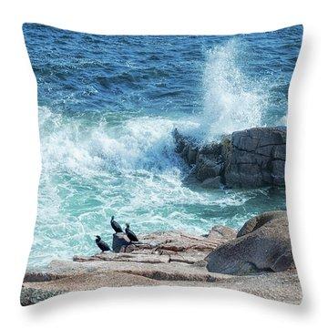 Three Cormorants At Monument Cove, Acadia National Park Throw Pillow