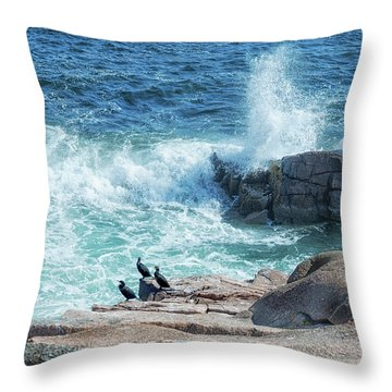 Three Cormorants At Monument Cove, Acadia National Park Throw Pillow