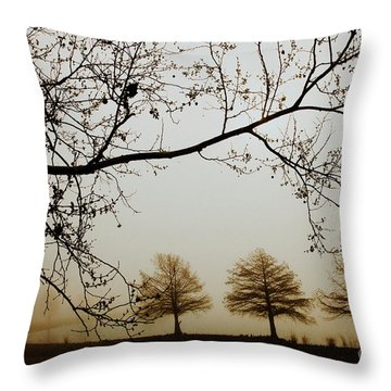 Throw Pillow featuring the photograph Three Cypress In The Mist by Iris Greenwell