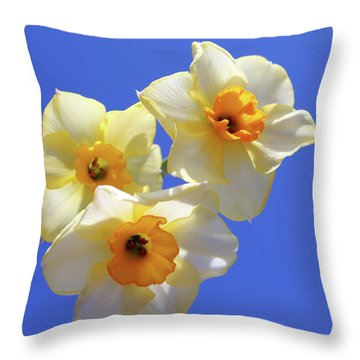 Throw Pillow featuring the photograph Three Daffodils by Judy Vincent