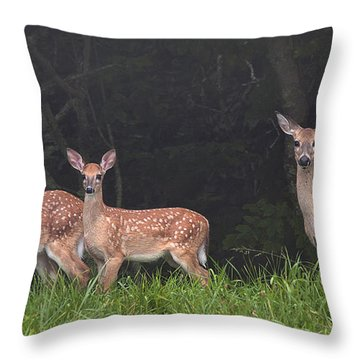 Three Does Throw Pillow