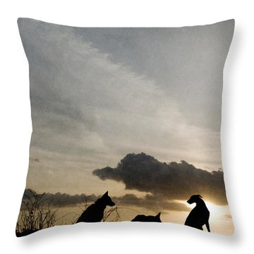 Three Dogs At Sunset Throw Pillow
