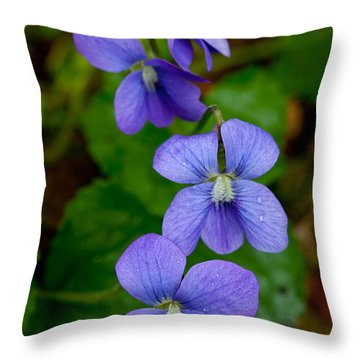 Three For The Show Throw Pillow