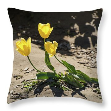 Three Gold Memories Throw Pillow