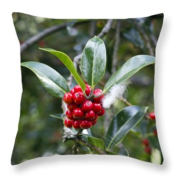 Three Happy Leaves Among Red Berries Throw Pillow