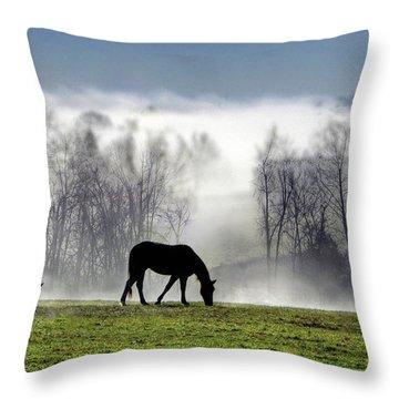 Three Horse Morning Throw Pillow