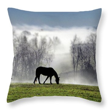 Three Horse Morning Throw Pillow