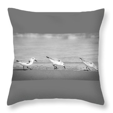 Throw Pillow featuring the photograph Three Hungry Little Guys by T Brian Jones