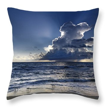 Throw Pillow featuring the photograph Three Ibises Before The Storm by Steven Sparks