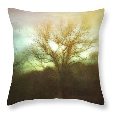Three Is A Magic Number Throw Pillow