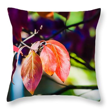 Three Leaves - 9583 Throw Pillow