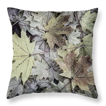 Three Leaves Throw Pillow