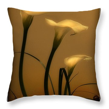 Three Lilies Throw Pillow