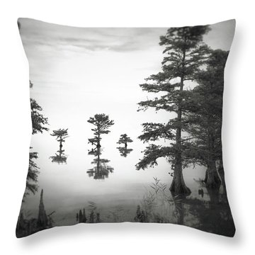 Three Little Brothers Throw Pillow by Eduard Moldoveanu