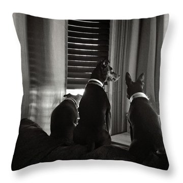 Three Min Pin Dogs Throw Pillow