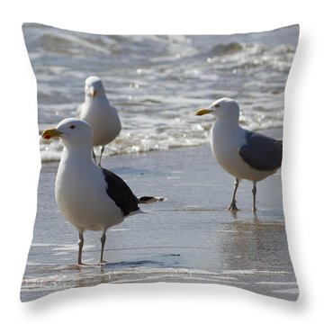 Three Of A Kind - Seagulls Throw Pillow
