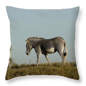 Three On The Horizon Throw Pillow