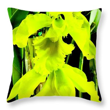 Three Orchids In Yellow Throw Pillow