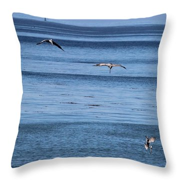 Three Pelicans Diving Throw Pillow