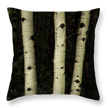 Throw Pillow featuring the photograph Three Pillars Of The Forest by James BO Insogna