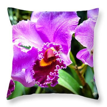 Throw Pillow featuring the photograph Three Purple Orchids by Joseph Hollingsworth