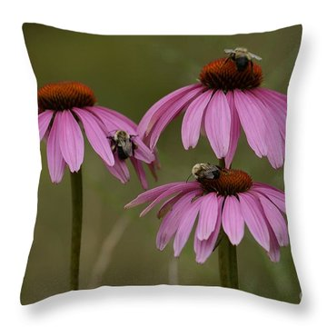 Three Throw Pillow by Randy Bodkins