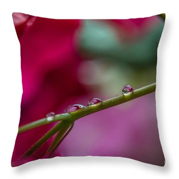 Three Reflecting Drops Throw Pillow by Michelle Meenawong
