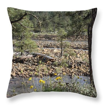 Throw Pillow featuring the photograph Three Rivers In One by Marie Neder