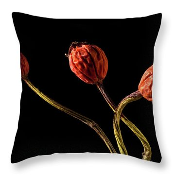 Three Rose Hips Throw Pillow