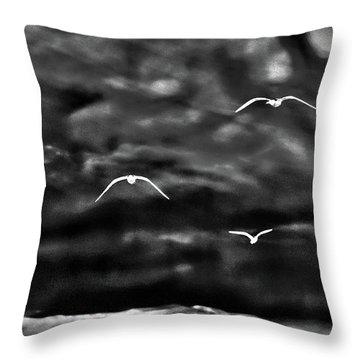 Three Seagulls Throw Pillow