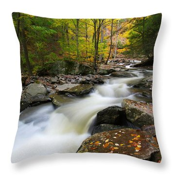 Three Seconds In Fall Throw Pillow