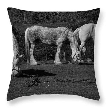 Three Shires Throw Pillow