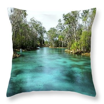 Three Sisters Springs Long View Throw Pillow