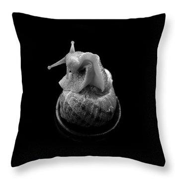 Three Snails Throw Pillow