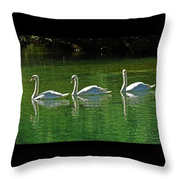 Three Swans Aswimming Throw Pillow by Judy Wanamaker