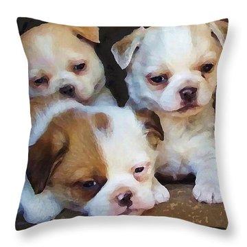 Three Sweeties Throw Pillow