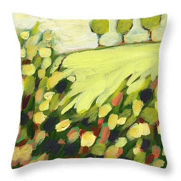 Abstract Throw Pillows