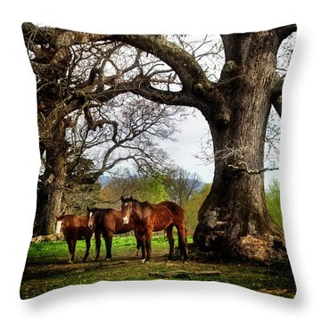 Three Under A Tree Throw Pillow by Greg Mimbs