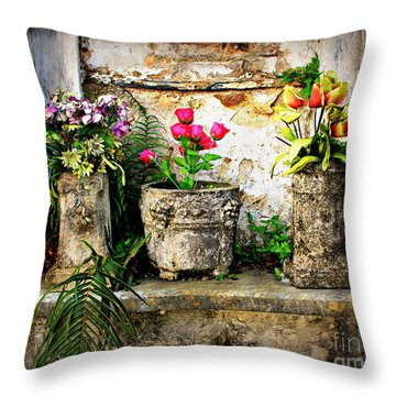 Three Vases Throw Pillow by Perry Webster