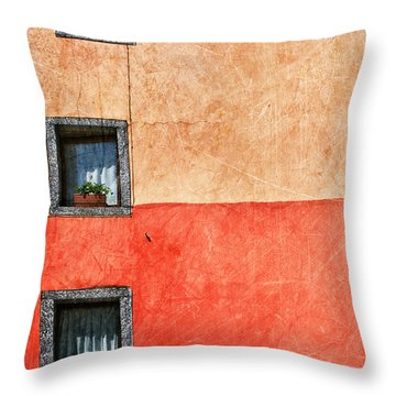 Three Vertical Windows Throw Pillow by Silvia Ganora
